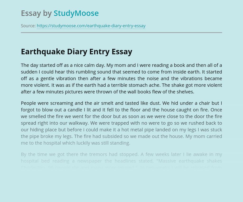Earthquake Diary Entry