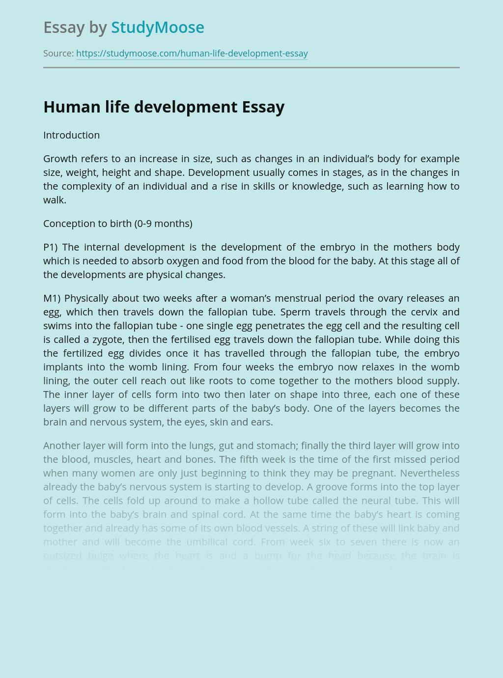 Human life development