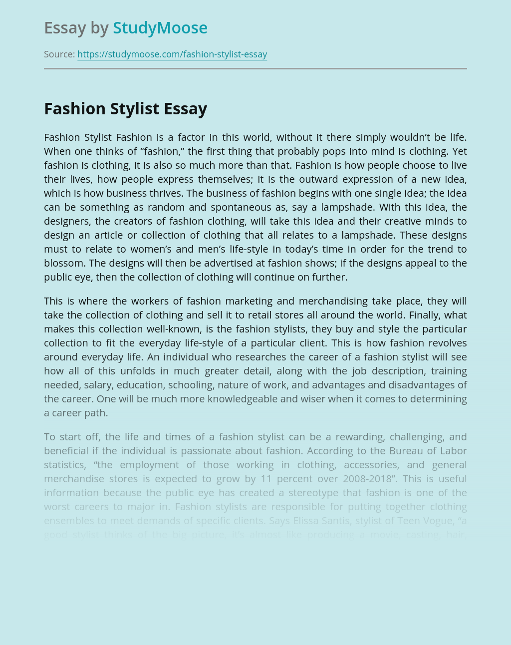Fashion Stylist Free Essay Example