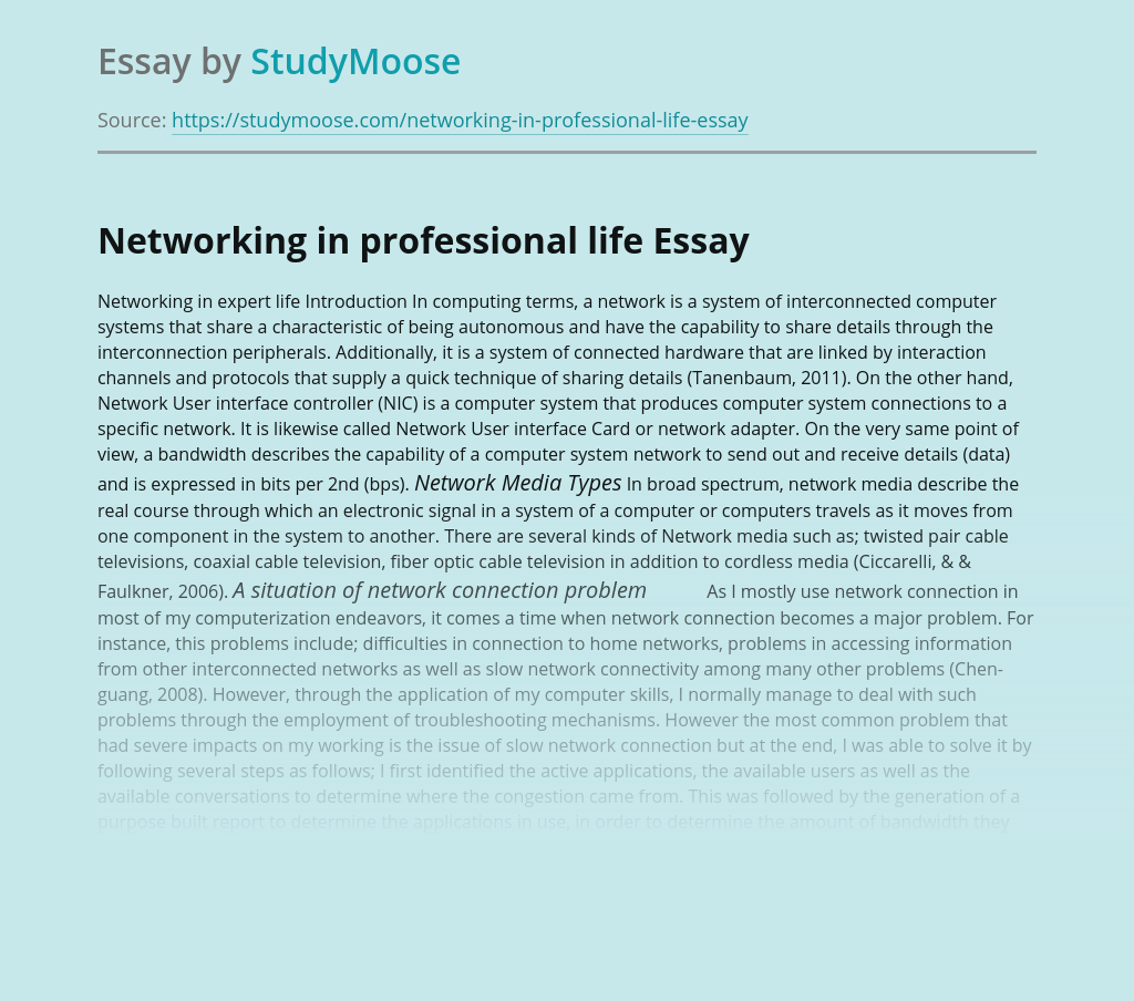 Networking in professional life