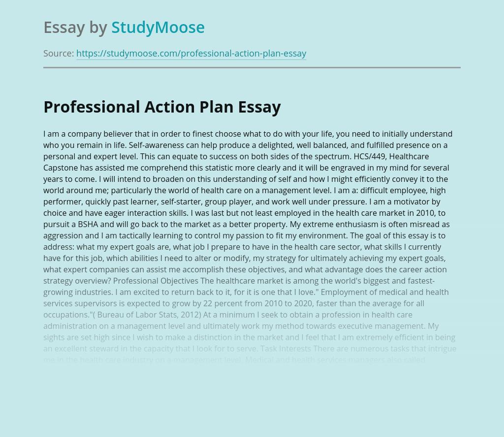 Professional Development Action Plan