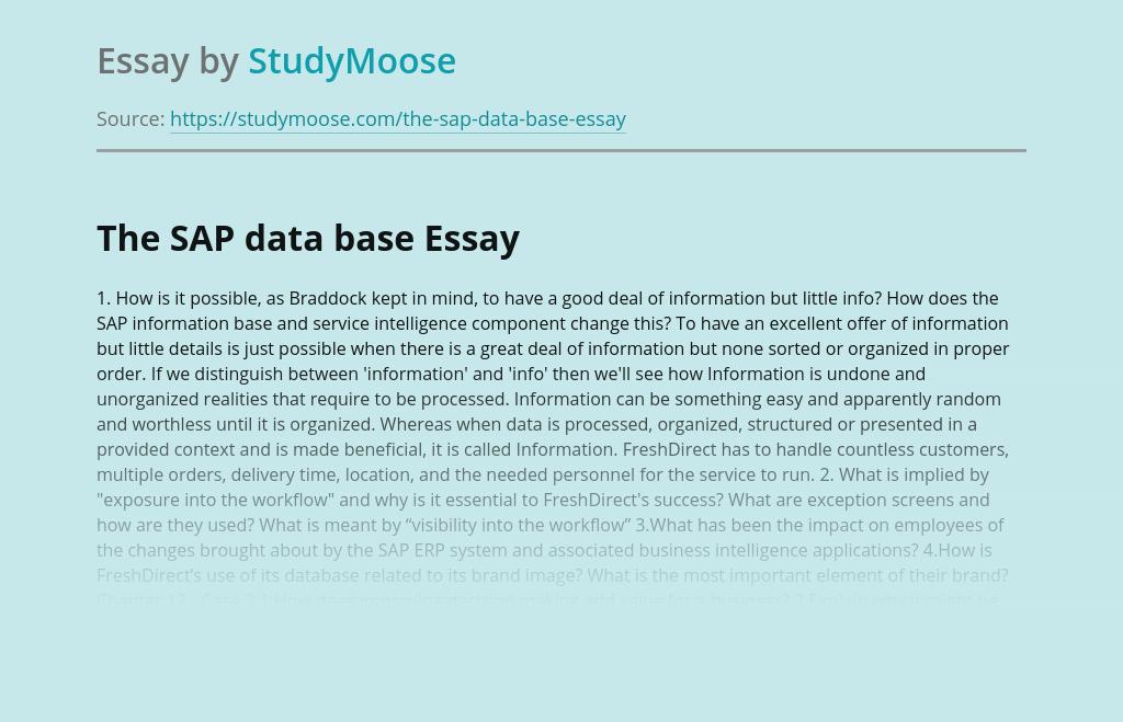 The SAP data base