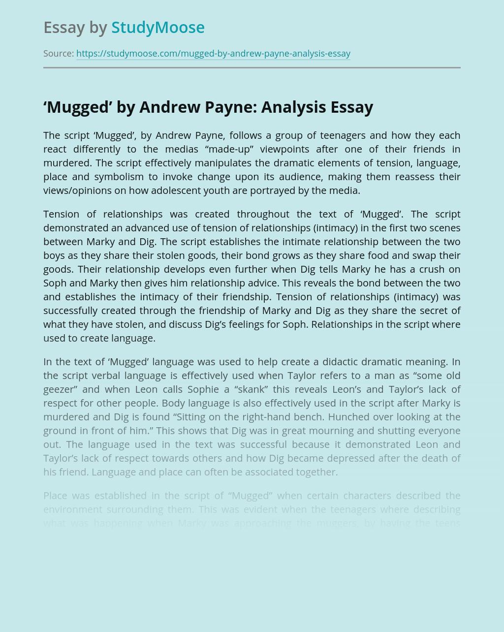 'Mugged' by Andrew Payne: Analysis