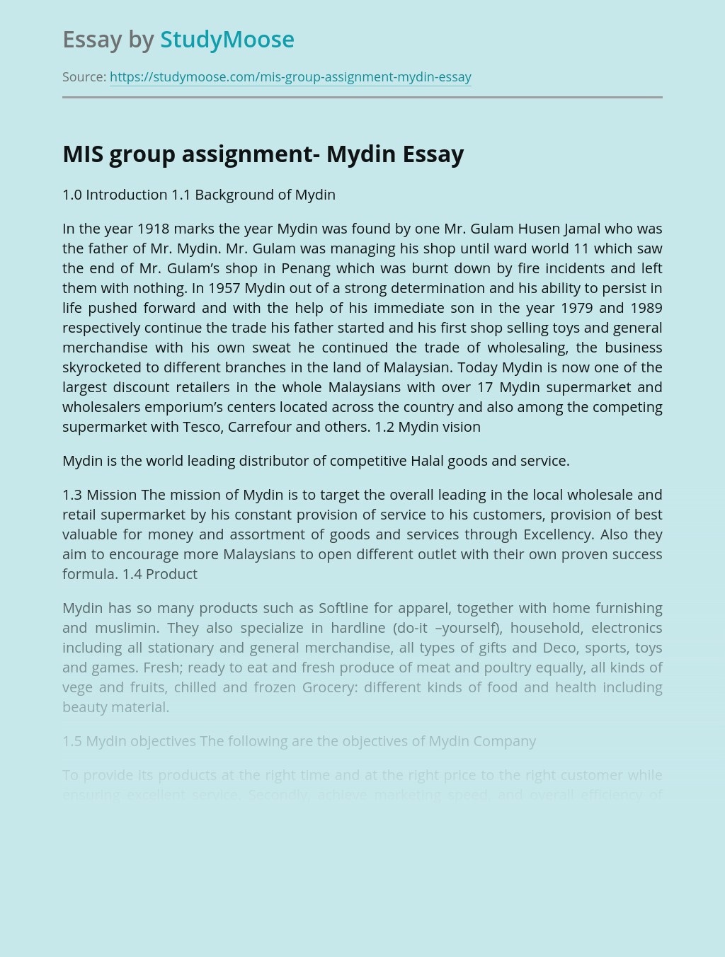 MIS group assignment- Mydin