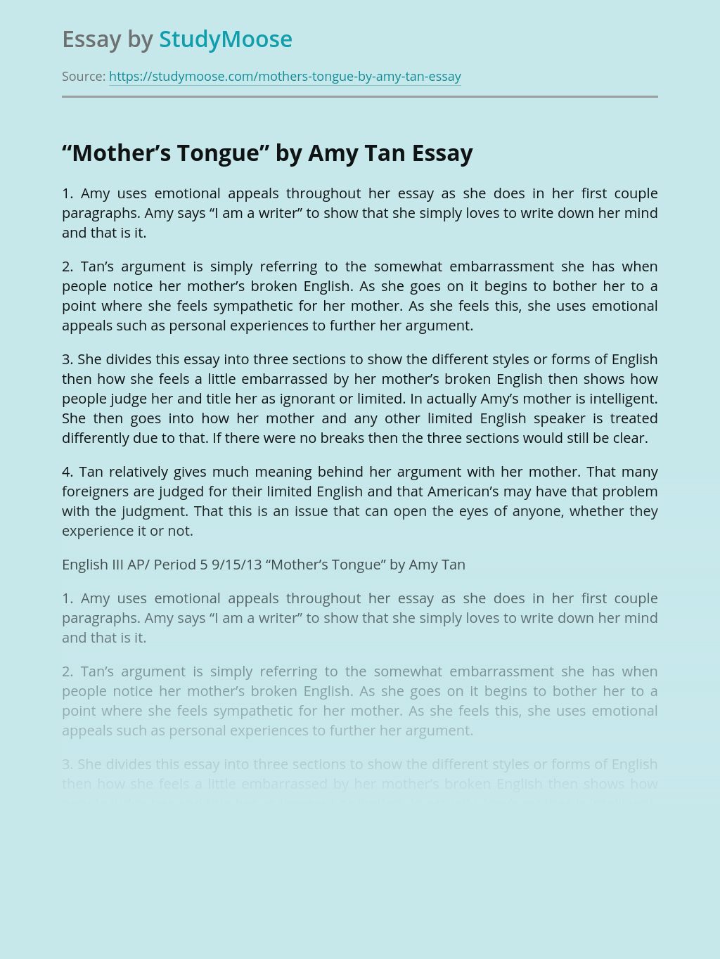 Amy Tan On English Language in Mother's Tongue