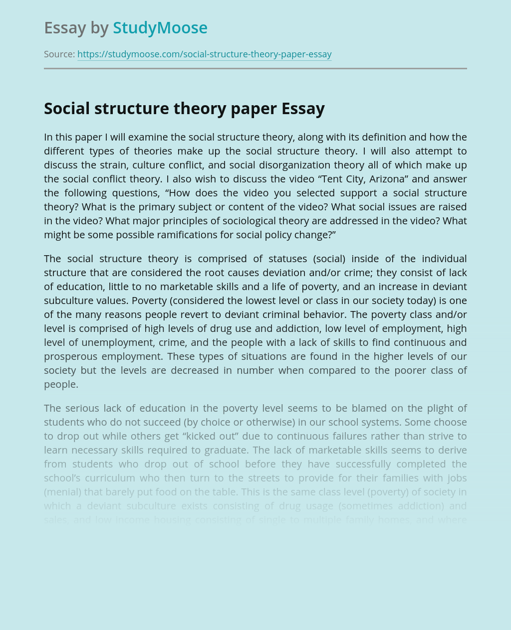 Social structure theory paper