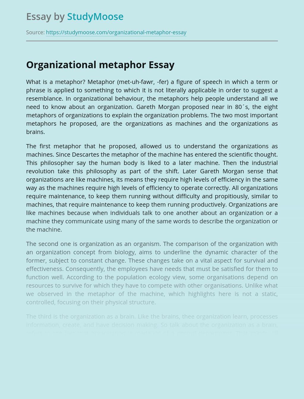 Organizational metaphor