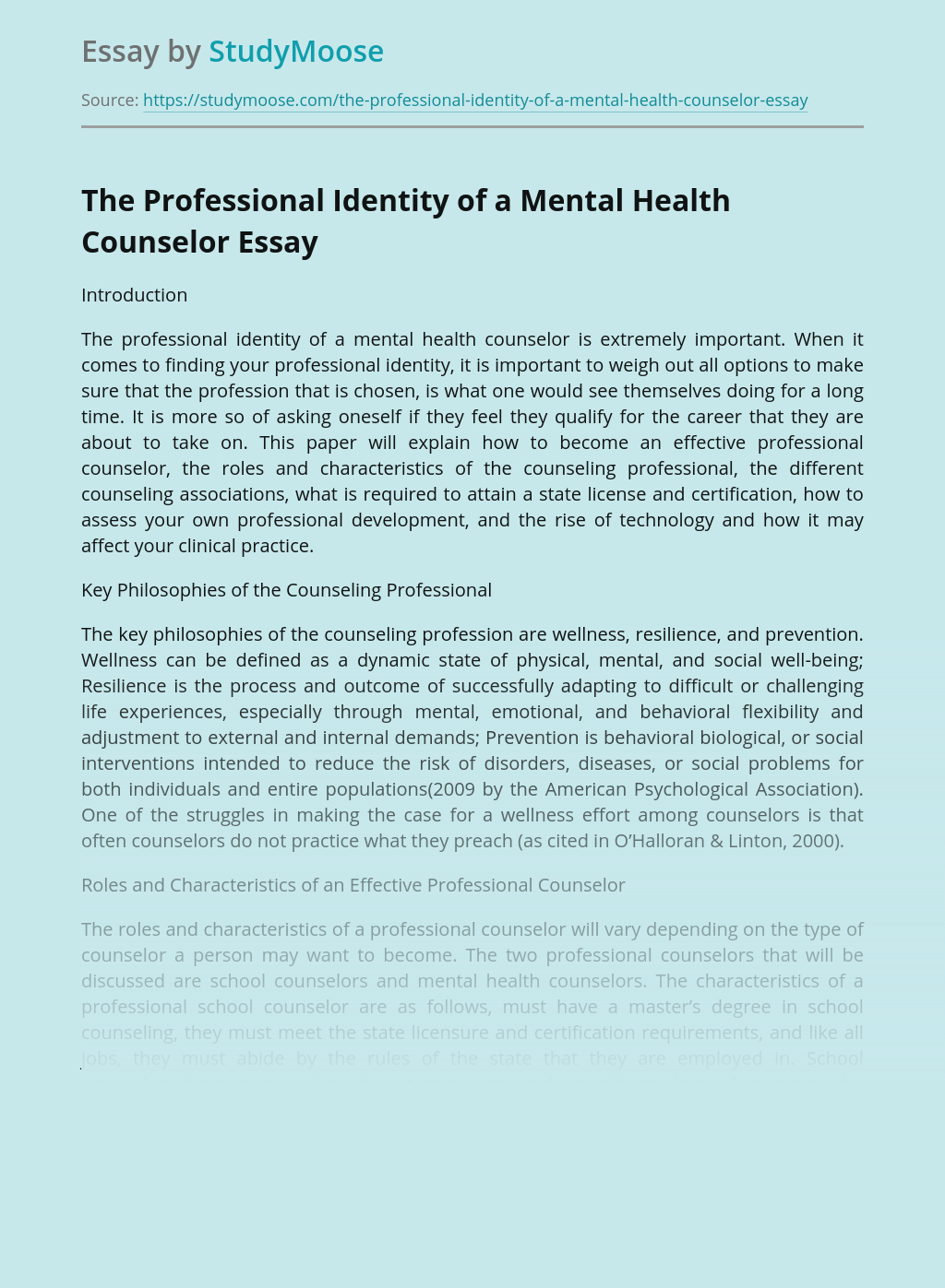 The Professional Identity of a Mental Health Counselor