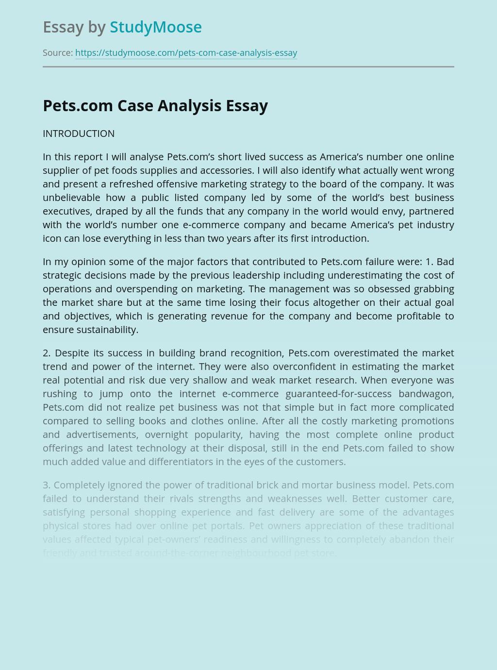 Pets.com Case Analysis