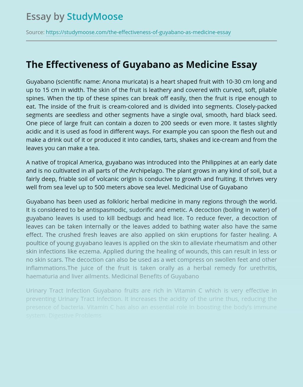 The Effectiveness of Guyabano as Medicine
