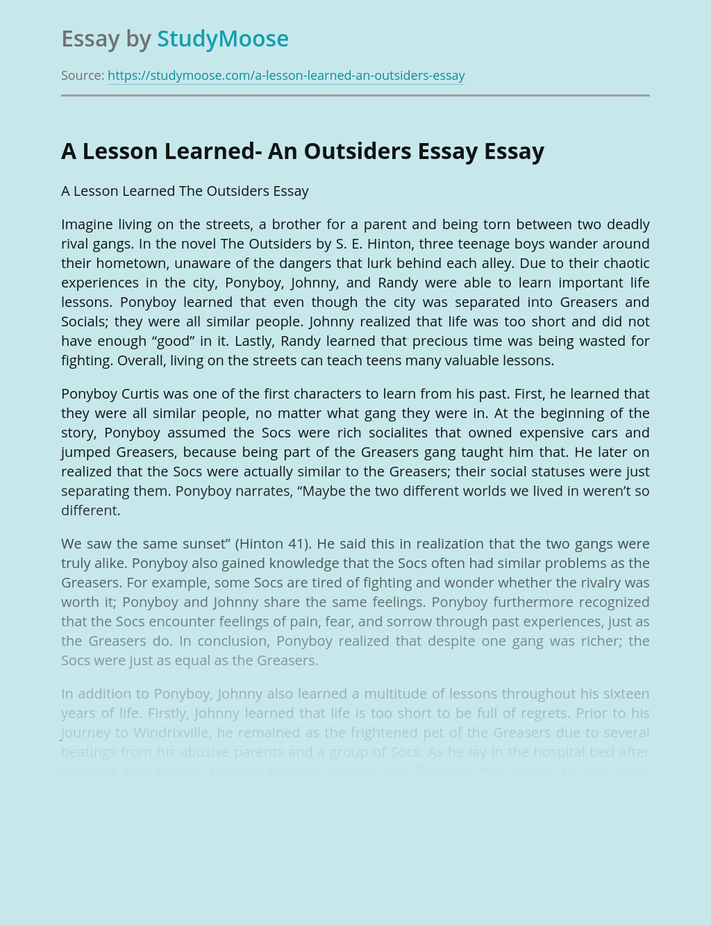 A Lesson Learned- An Outsiders Essay