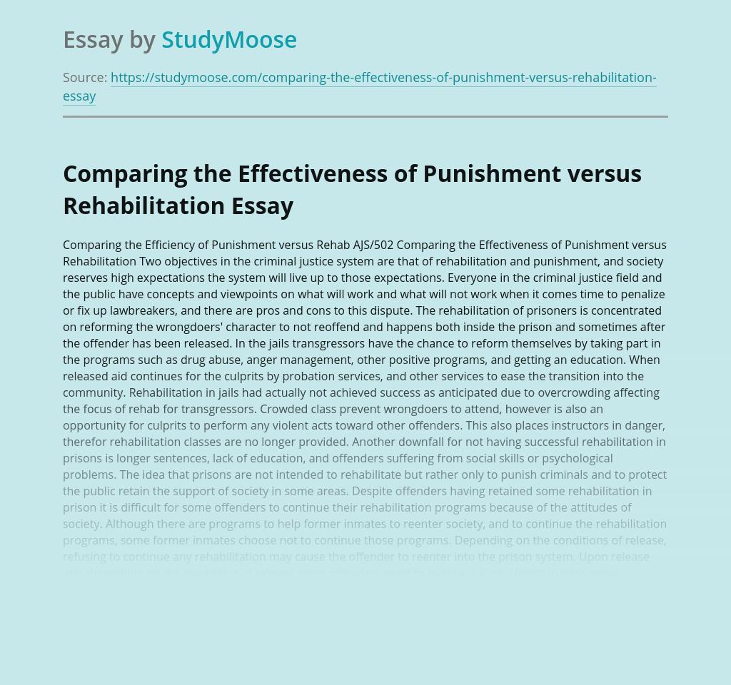 Comparing the Effectiveness of Punishment versus Rehabilitation