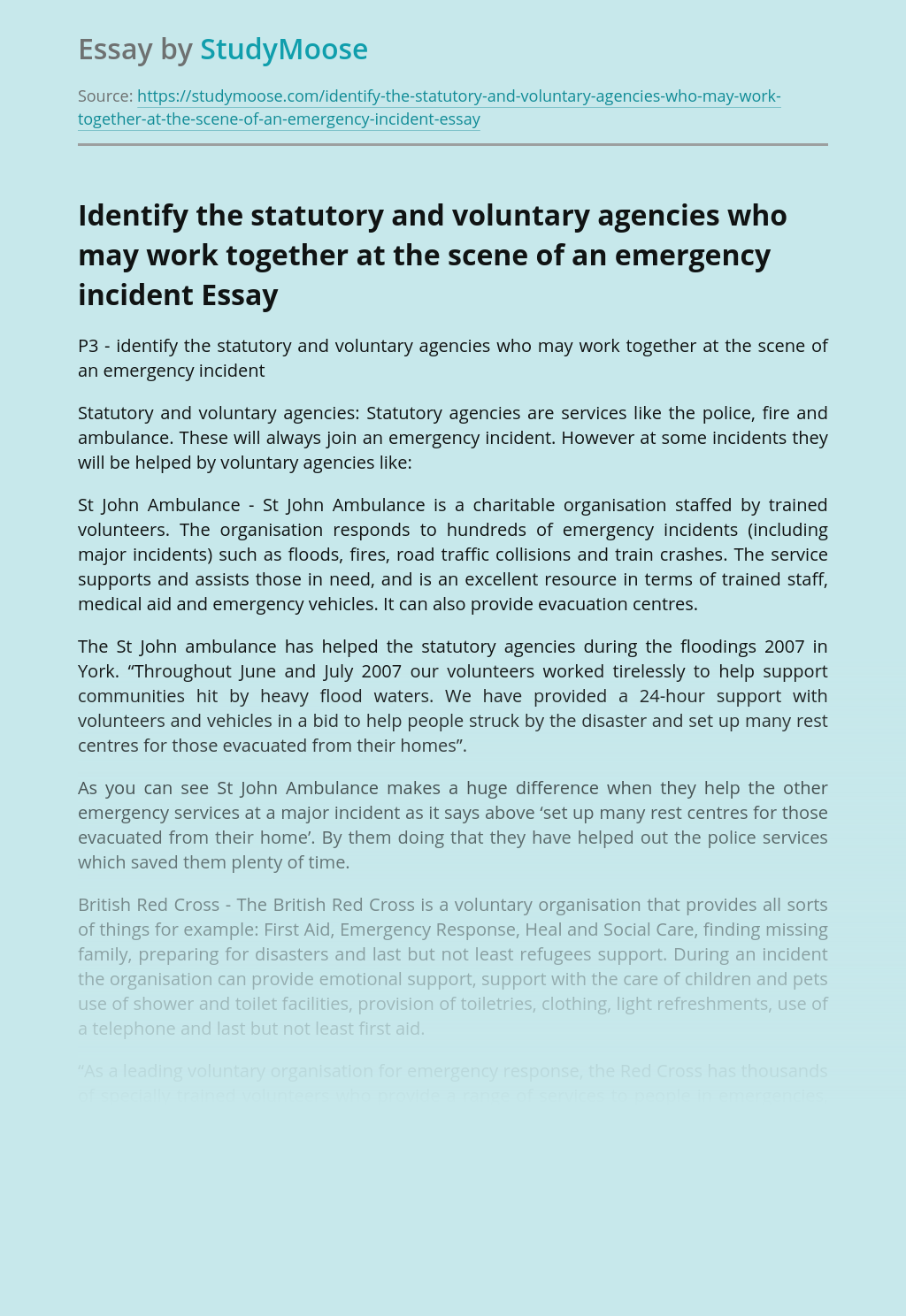 Identify the statutory and voluntary agencies who may work together at the scene of an emergency incident