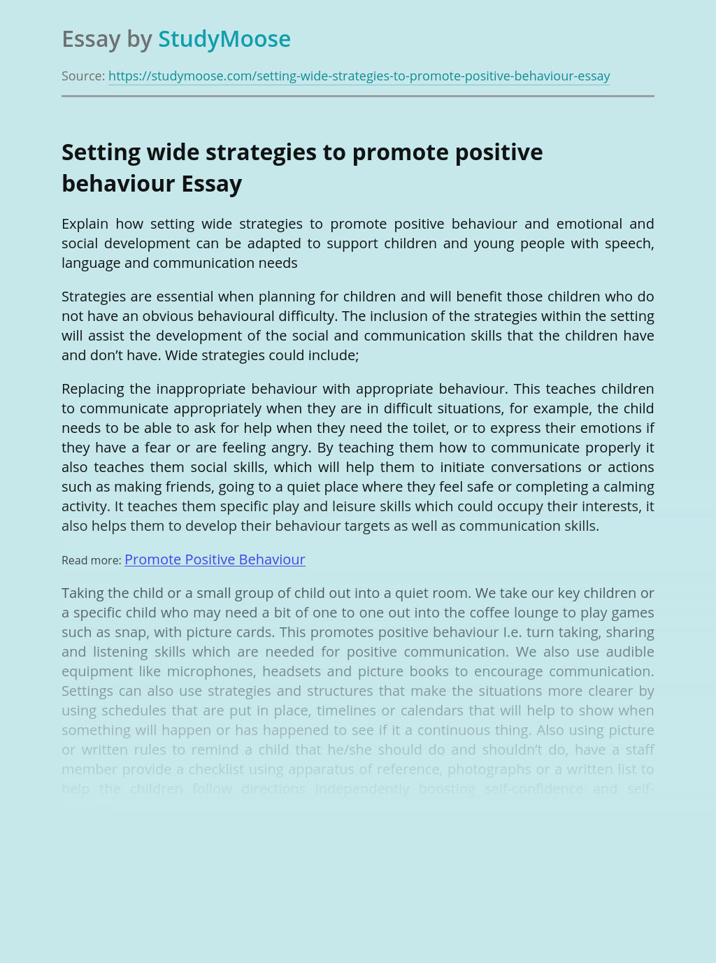 Setting Wide Strategies to Promote Positive Behaviour