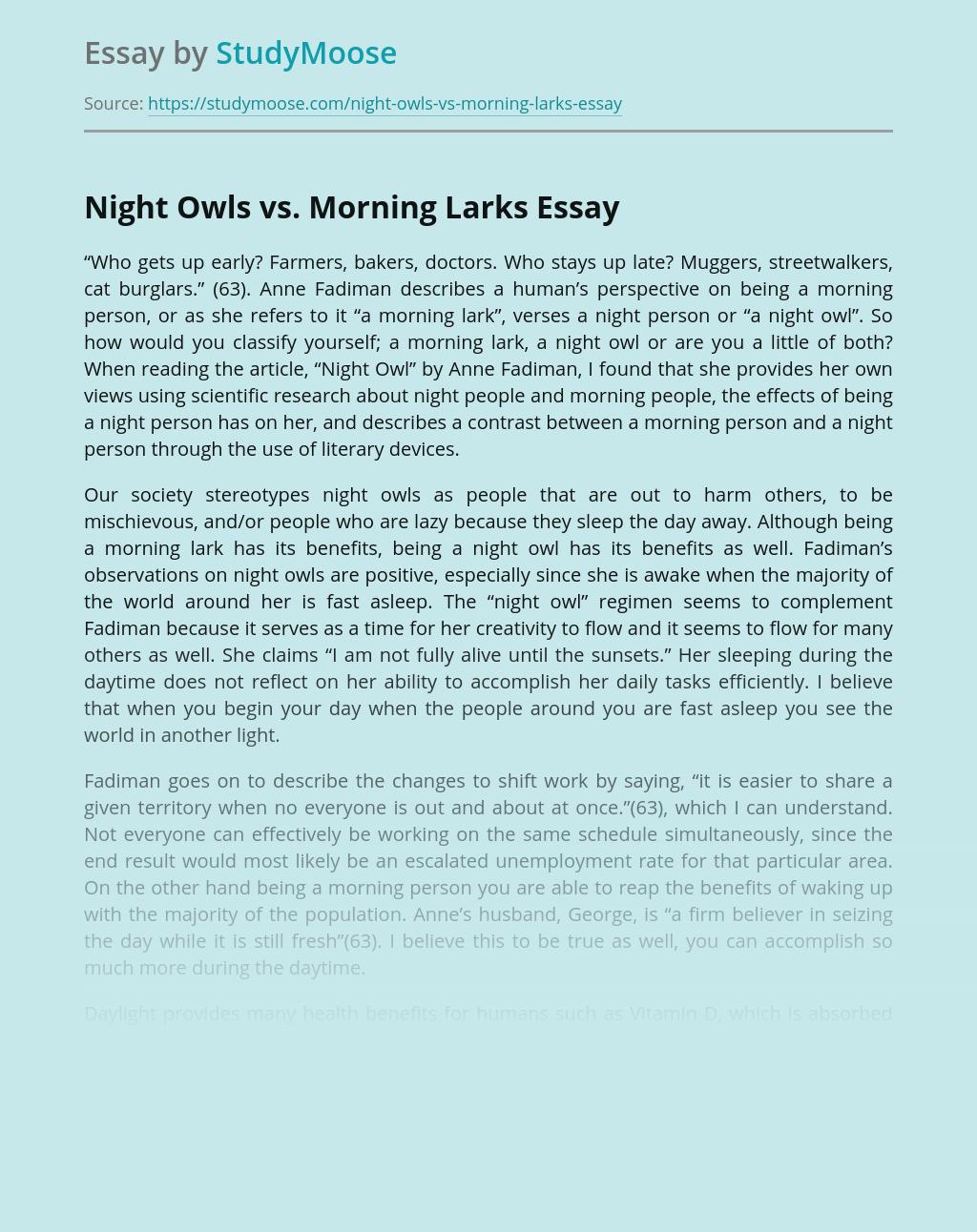 Night Owls vs. Morning Larks
