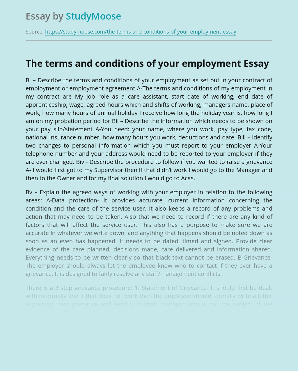 The terms and conditions of your employment