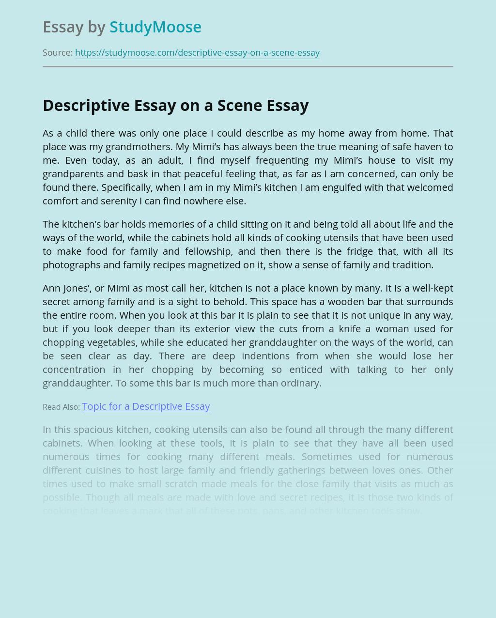 Descriptive Essay on a Scene
