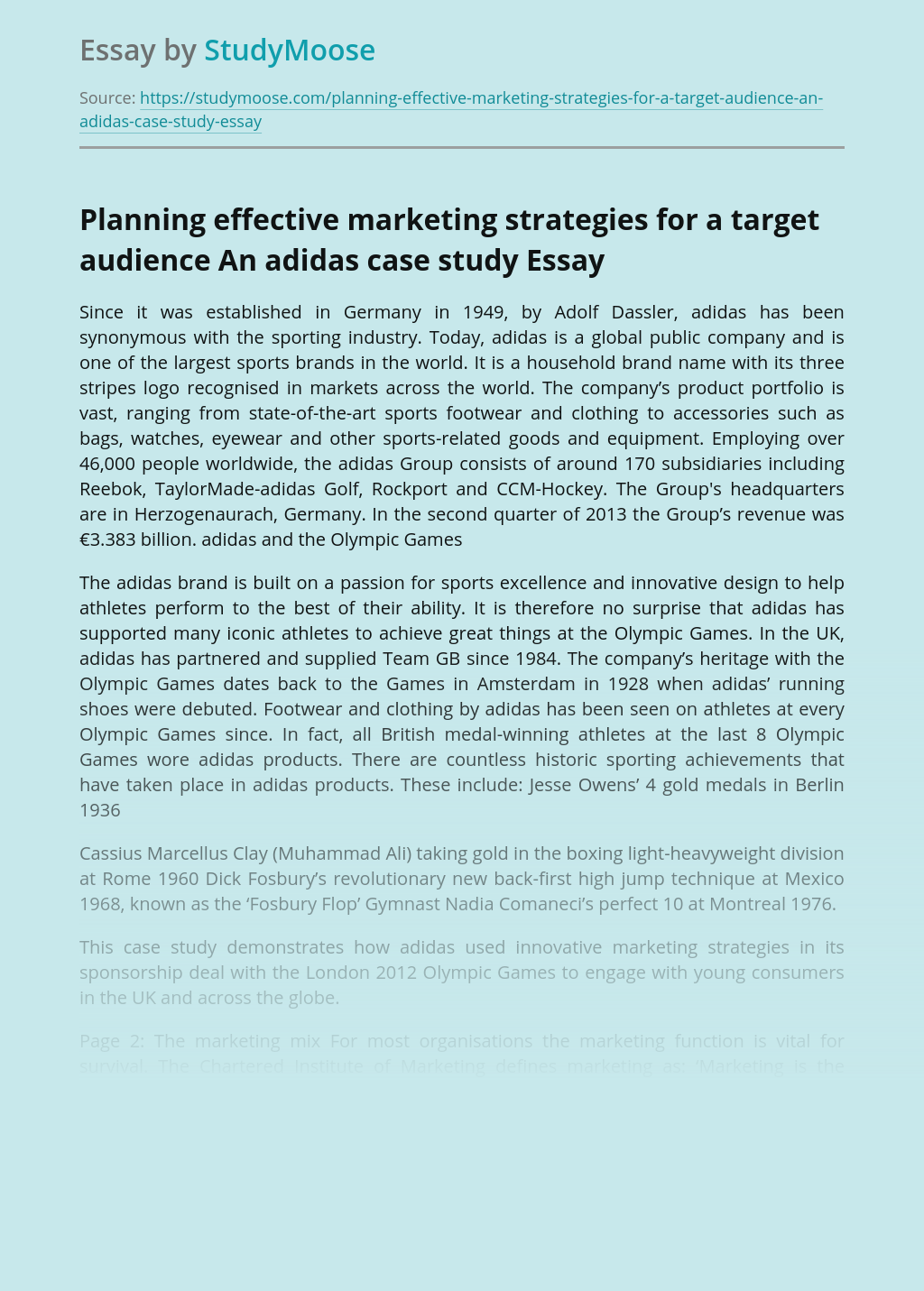 ?Planning effective marketing strategies for a target audience - an Adidas case study