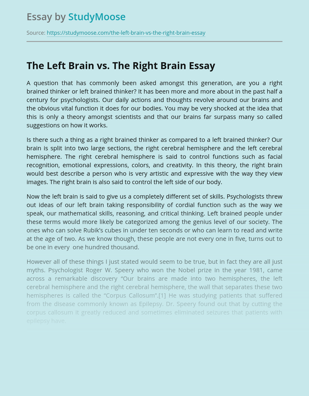 The Left Brain vs. The Right Brain