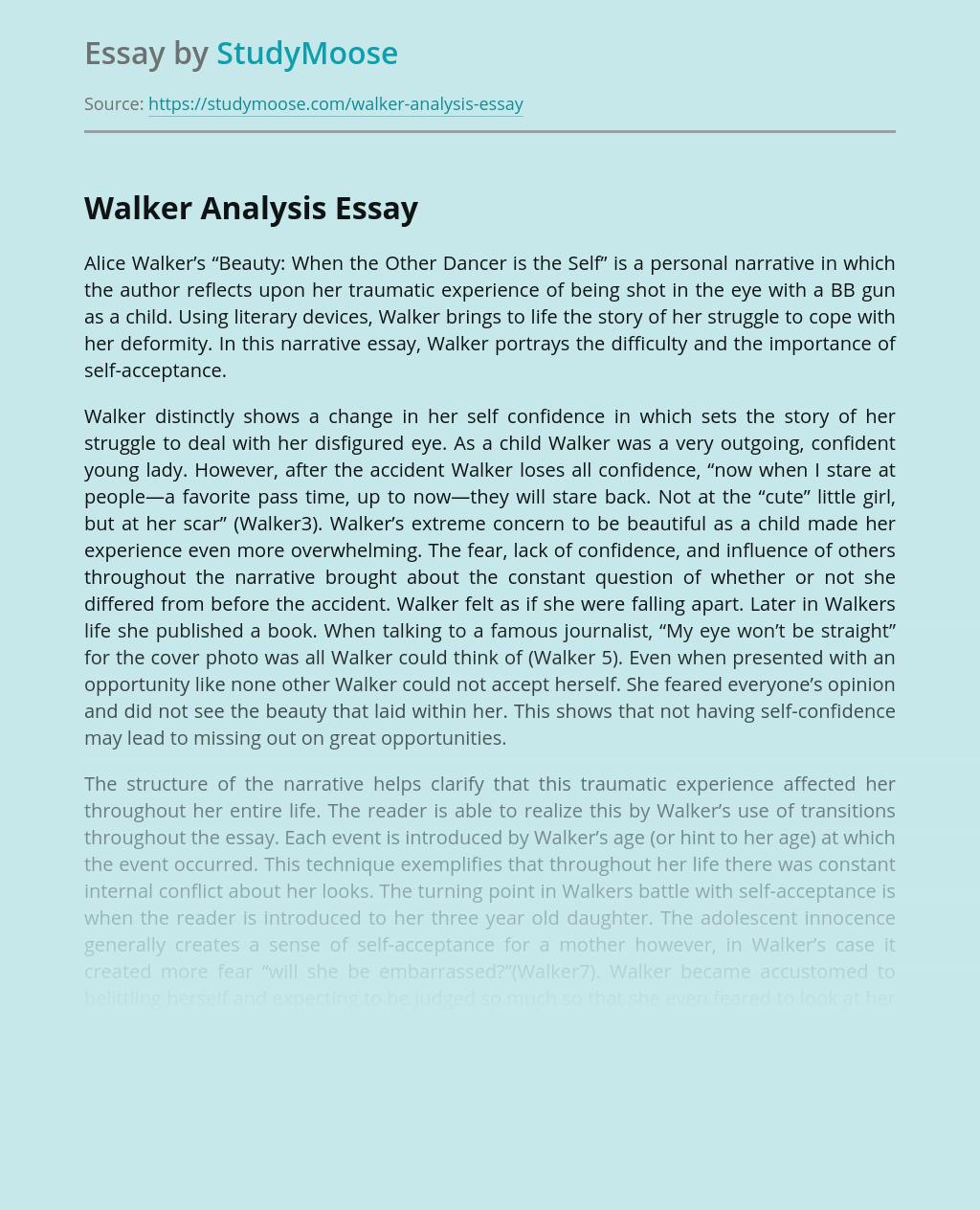 essays by alice walker