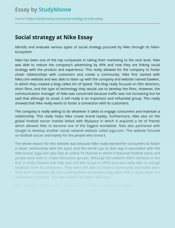 Social Media in Social Strategy at Nike