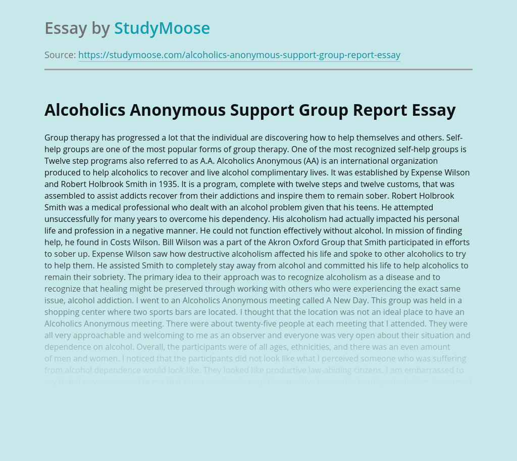 Alcoholics Anonymous Support Group Report