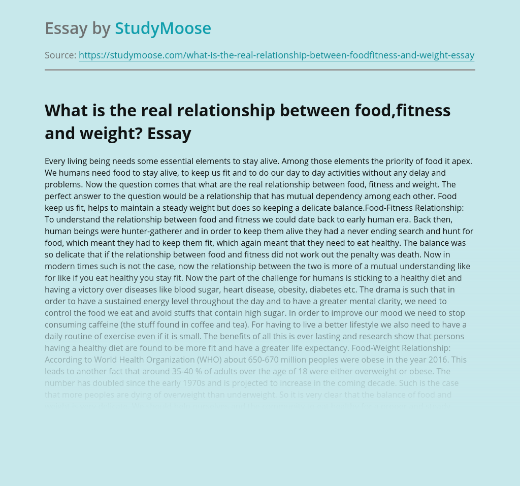 What is the real relationship between food,fitness and weight?