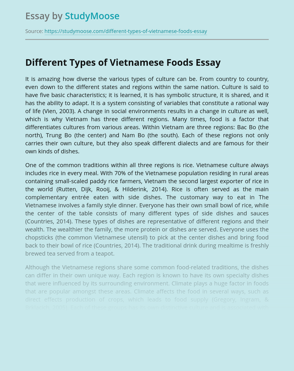 Different Types of Vietnamese Foods