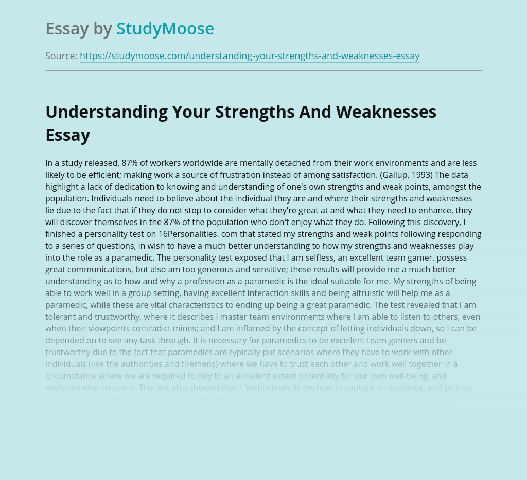 Understanding Your Strengths And Weaknesses