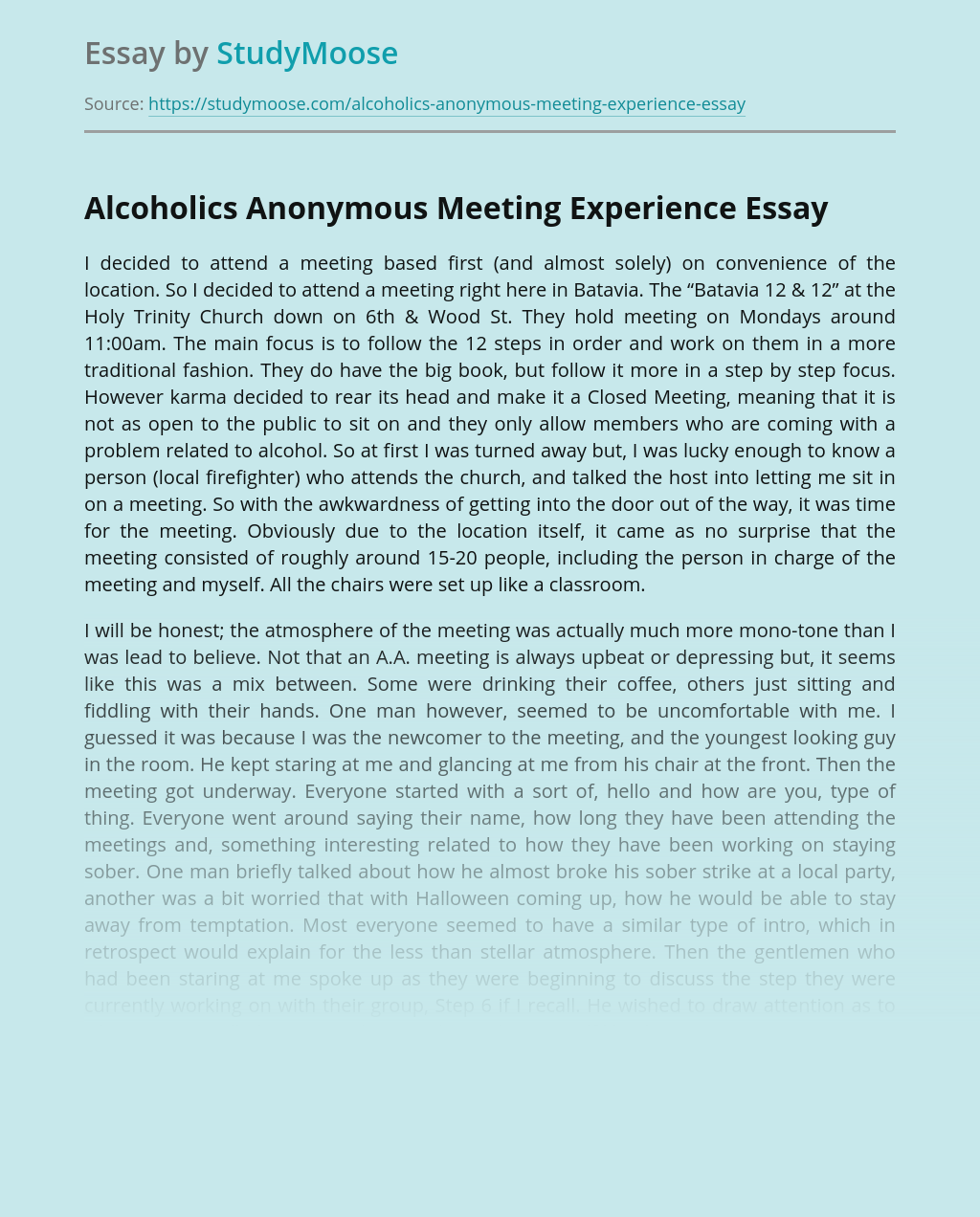 Alcoholics Anonymous Meeting Experience