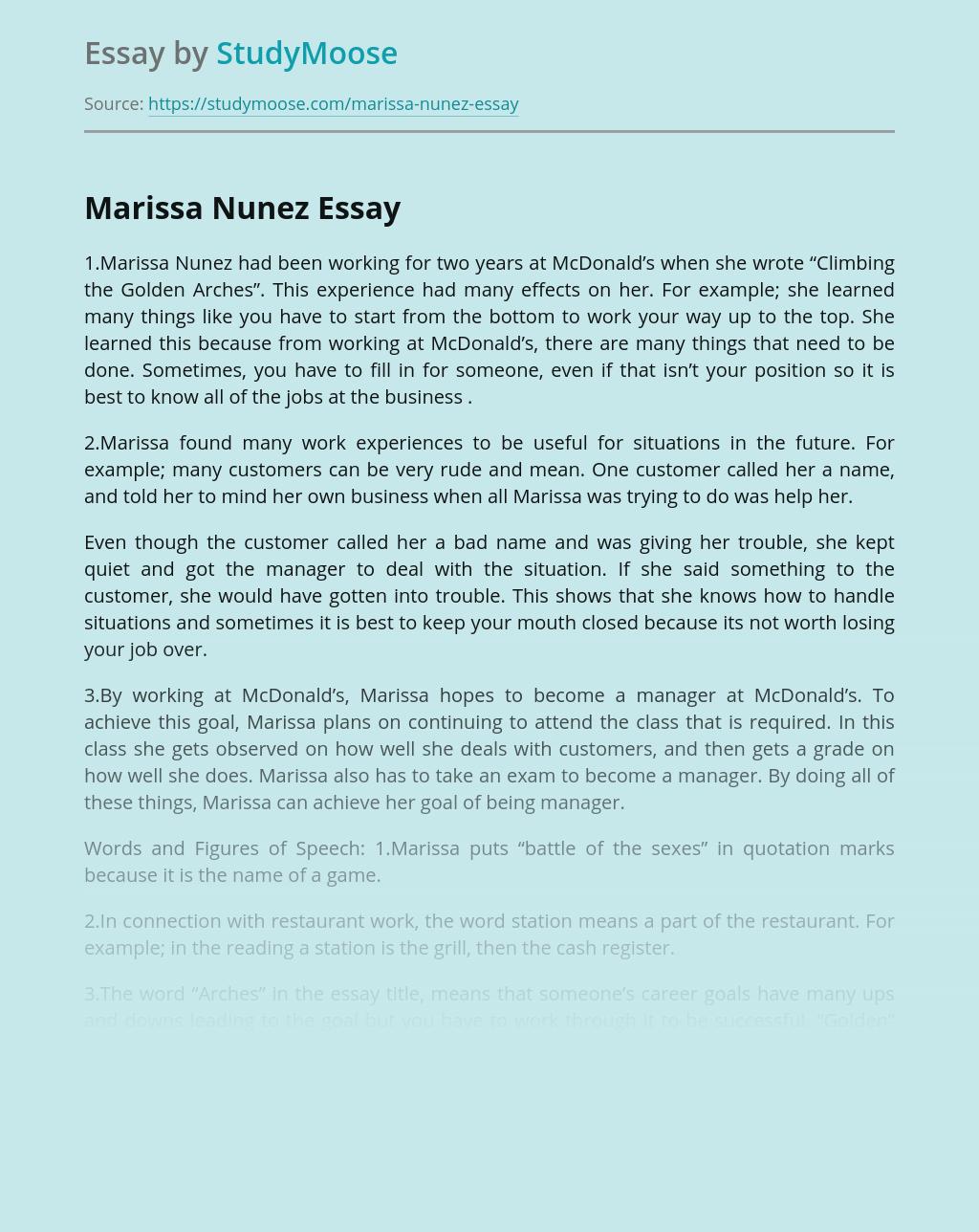 Professional Behavior of Marissa Nunez