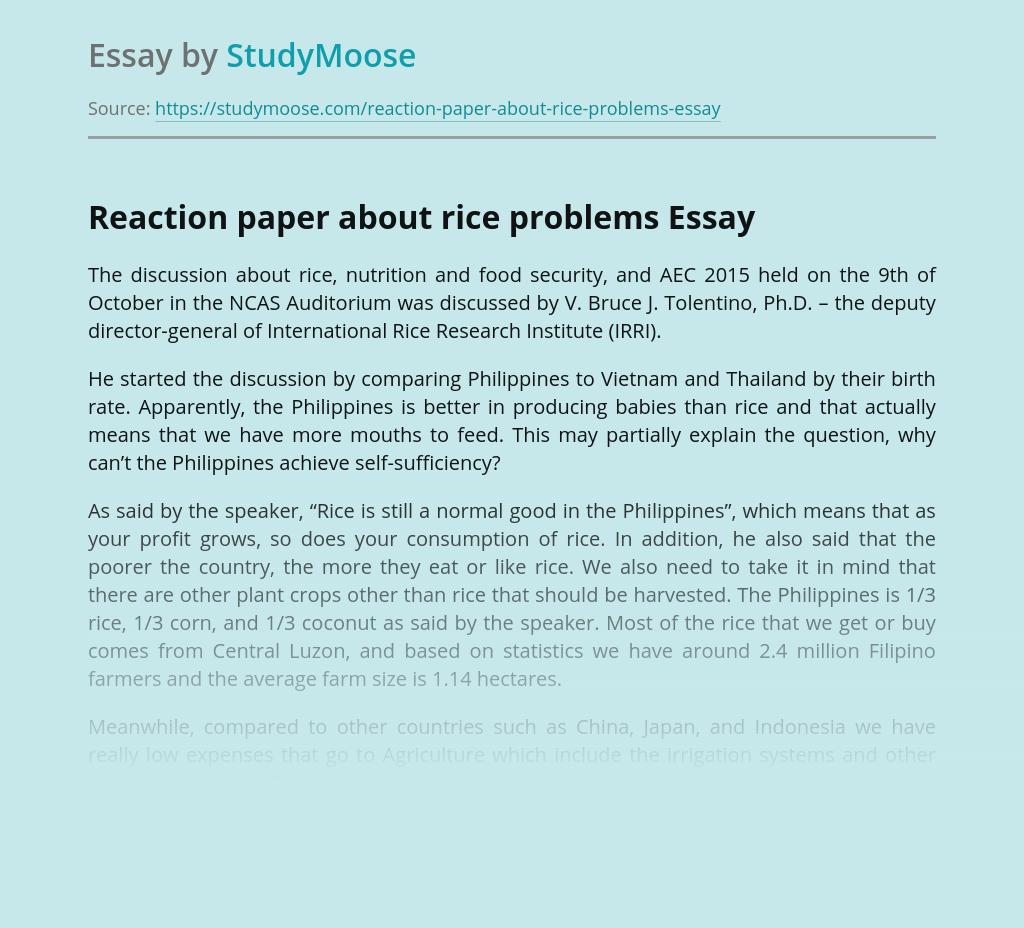 Custom essay paper help parts