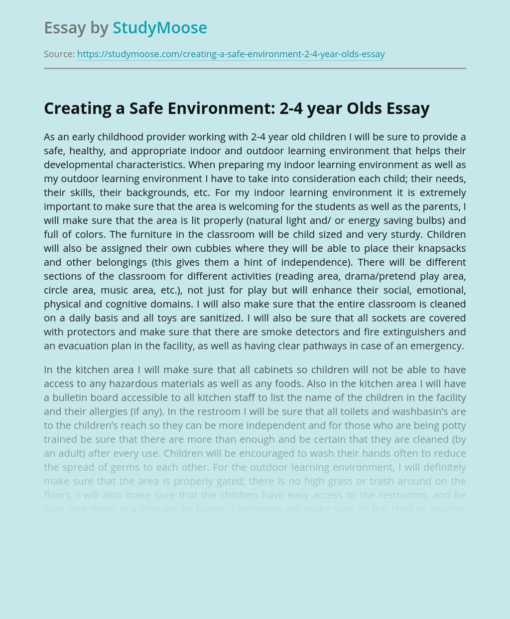 Creating a Safe Environment: 2-4 year Olds