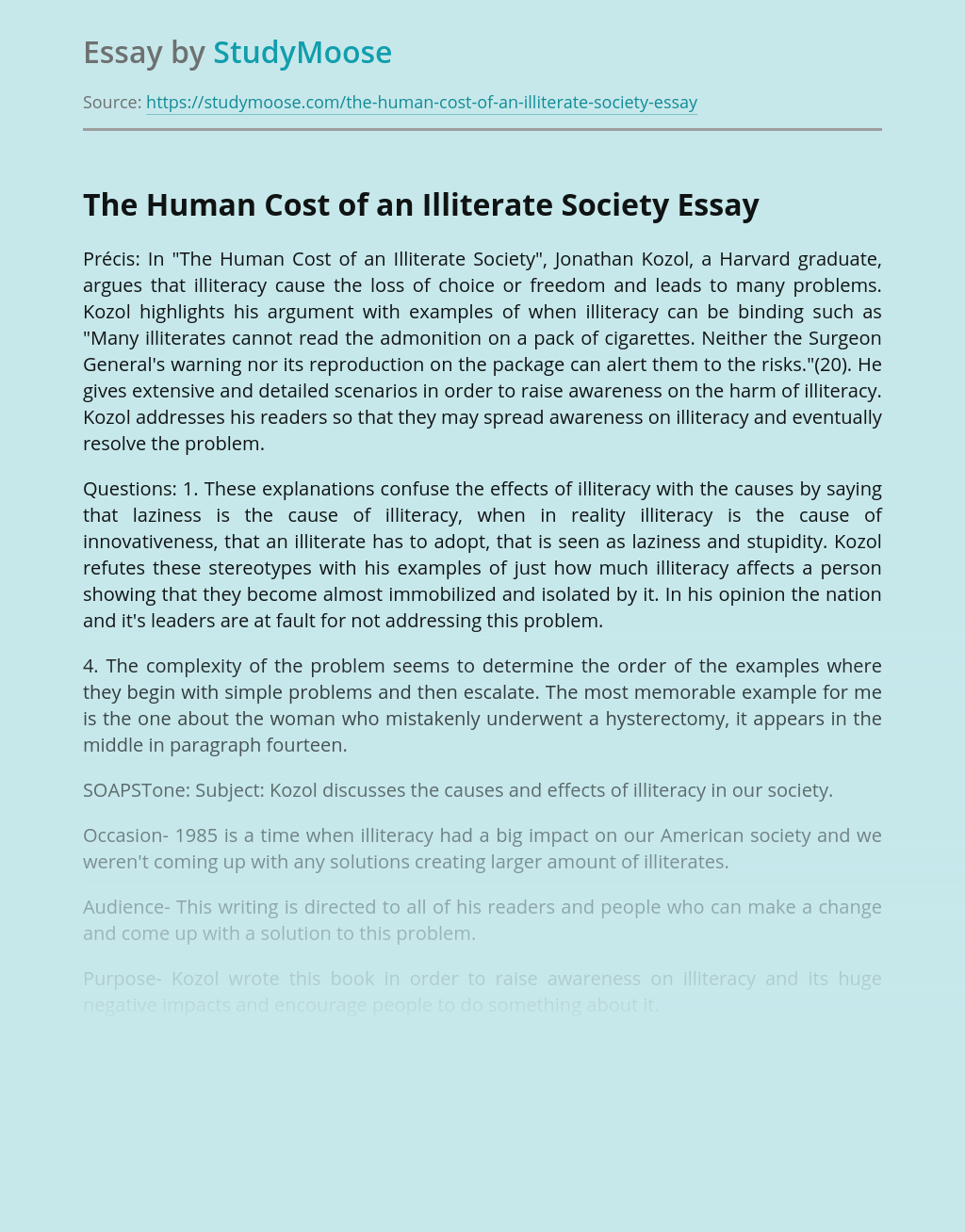 effect of illiteracy essays