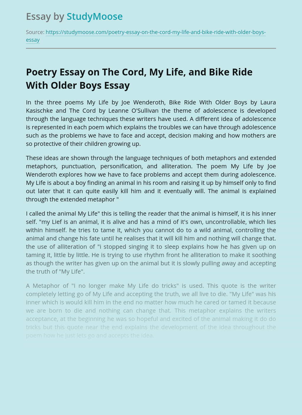 Poetry Essay on The Cord, My Life, and Bike Ride With Older Boys