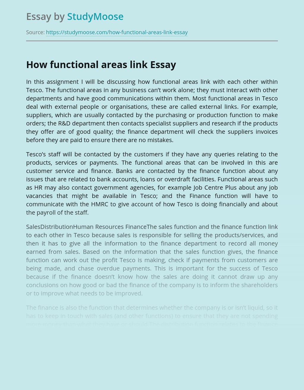 How Functional Areas Link in Tesco Company?