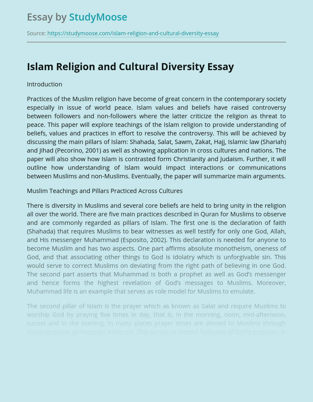 Islam Religion and Cultural Diversity