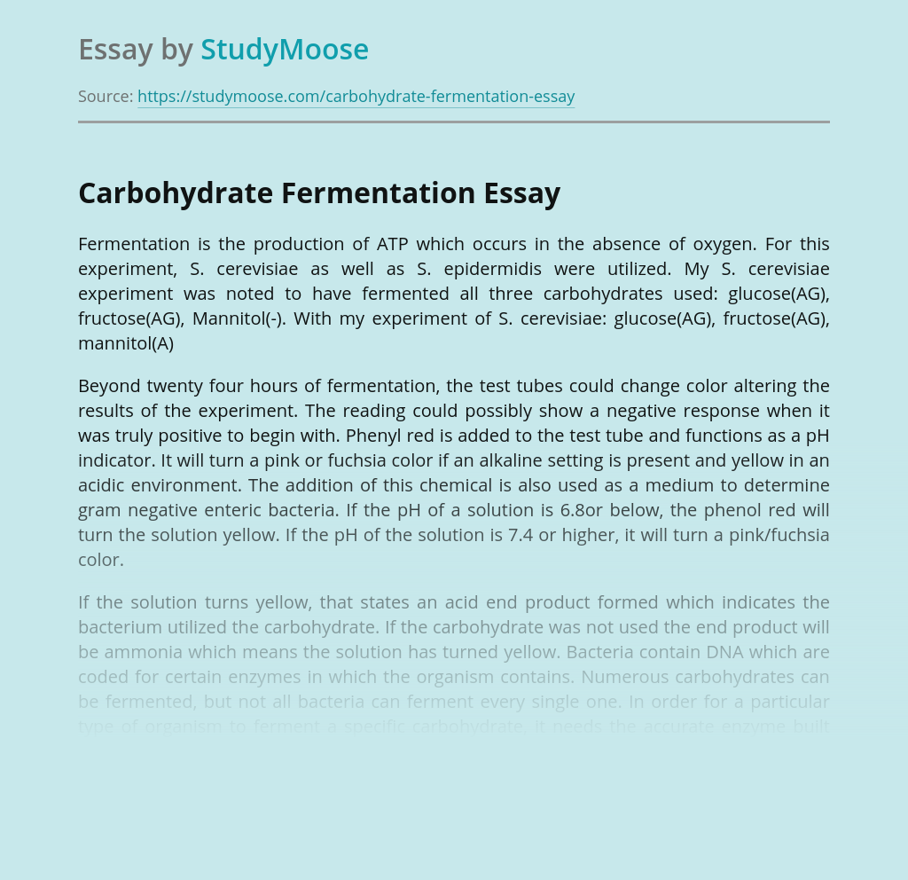 Carbohydrate Fermentation