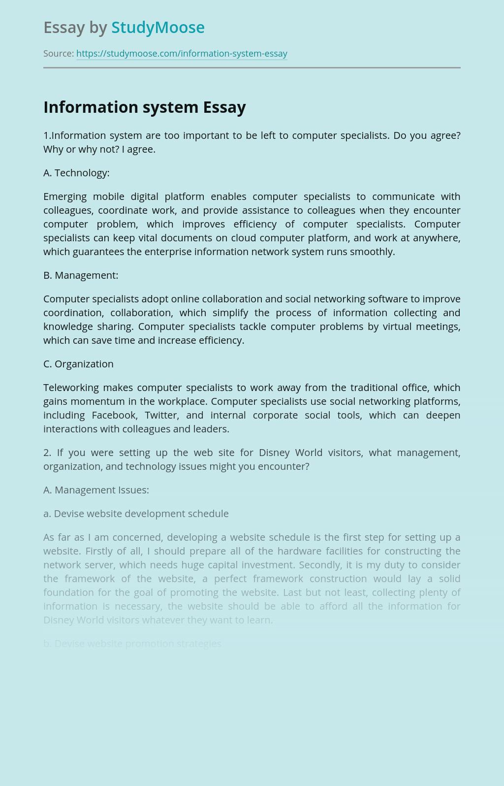 Managing Information System in Internet