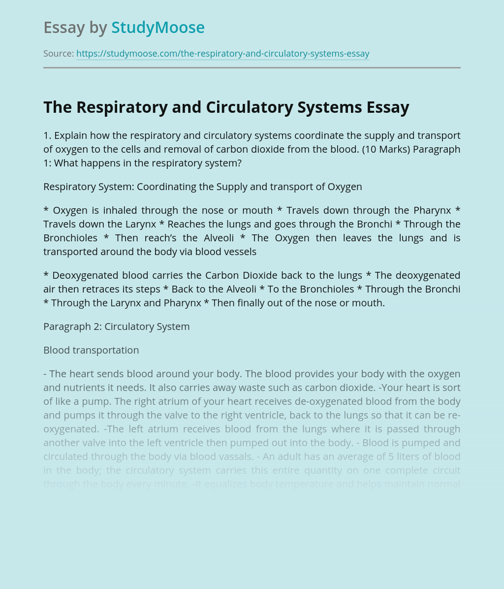 The Respiratory and Circulatory Systems