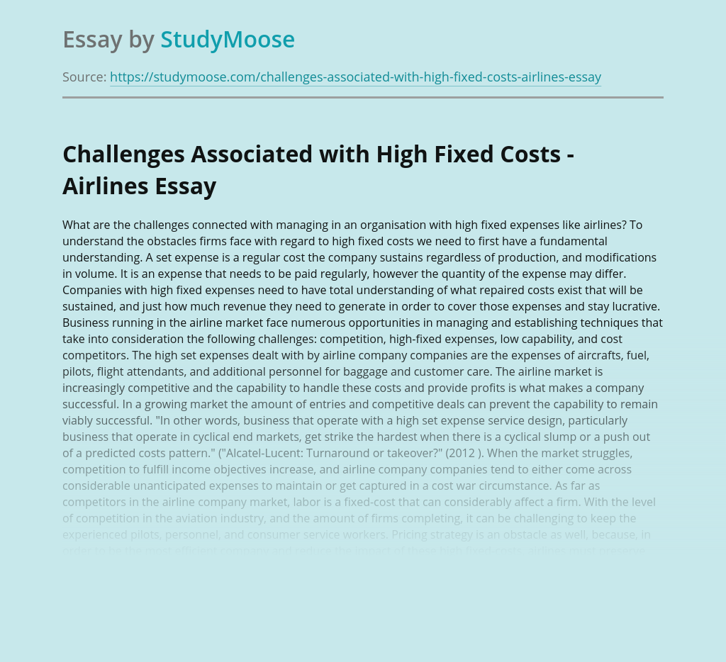 Airline Company and High Fixed Costs