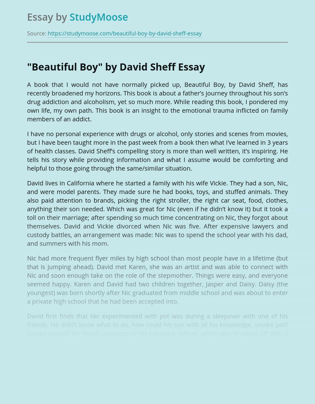 """""""Beautiful Boy"""" by David Sheff"""