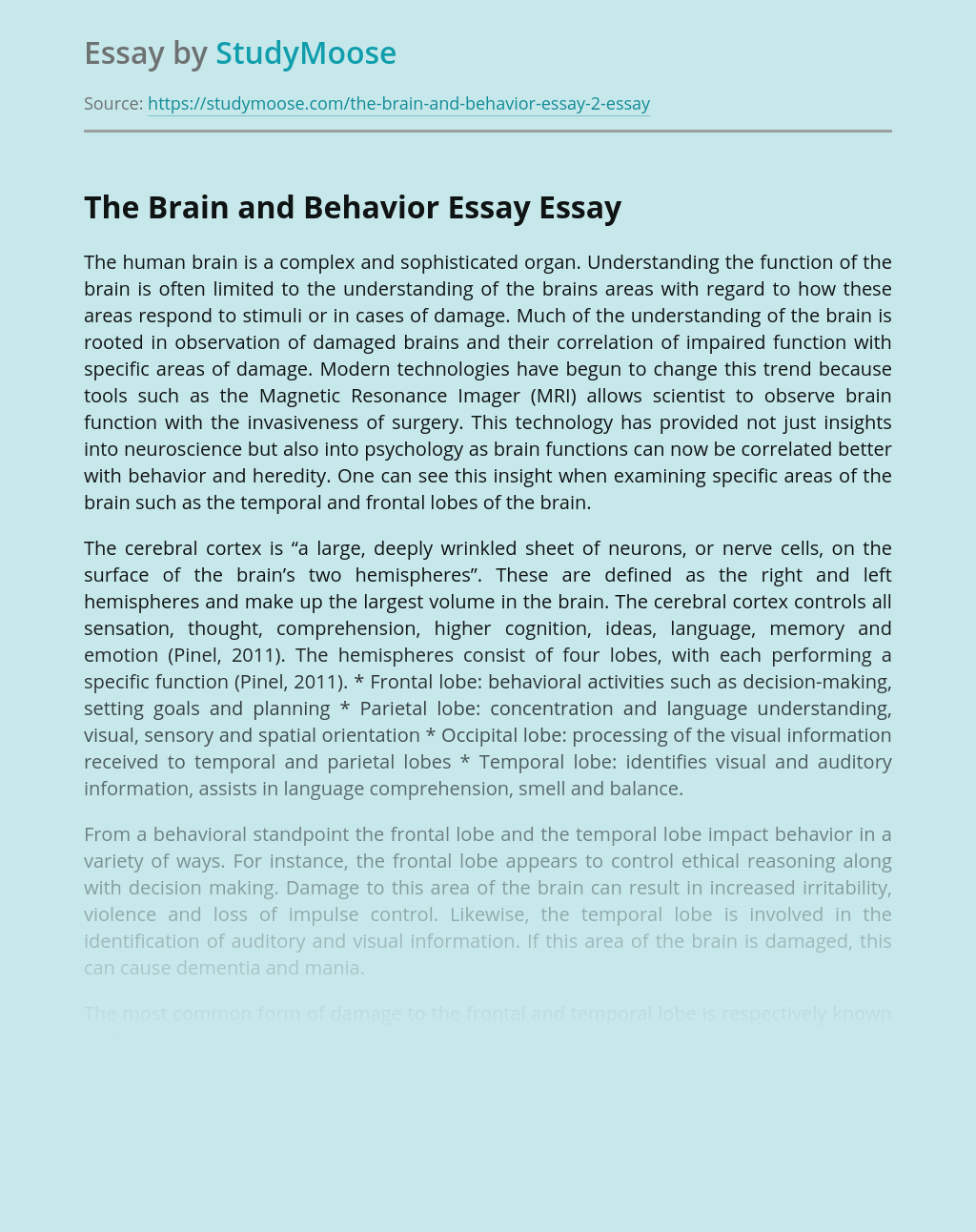 The Brain and Behavior Essay