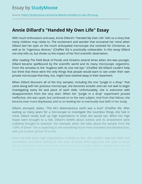 "Annie Dillard's ""Handed My Own Life"""