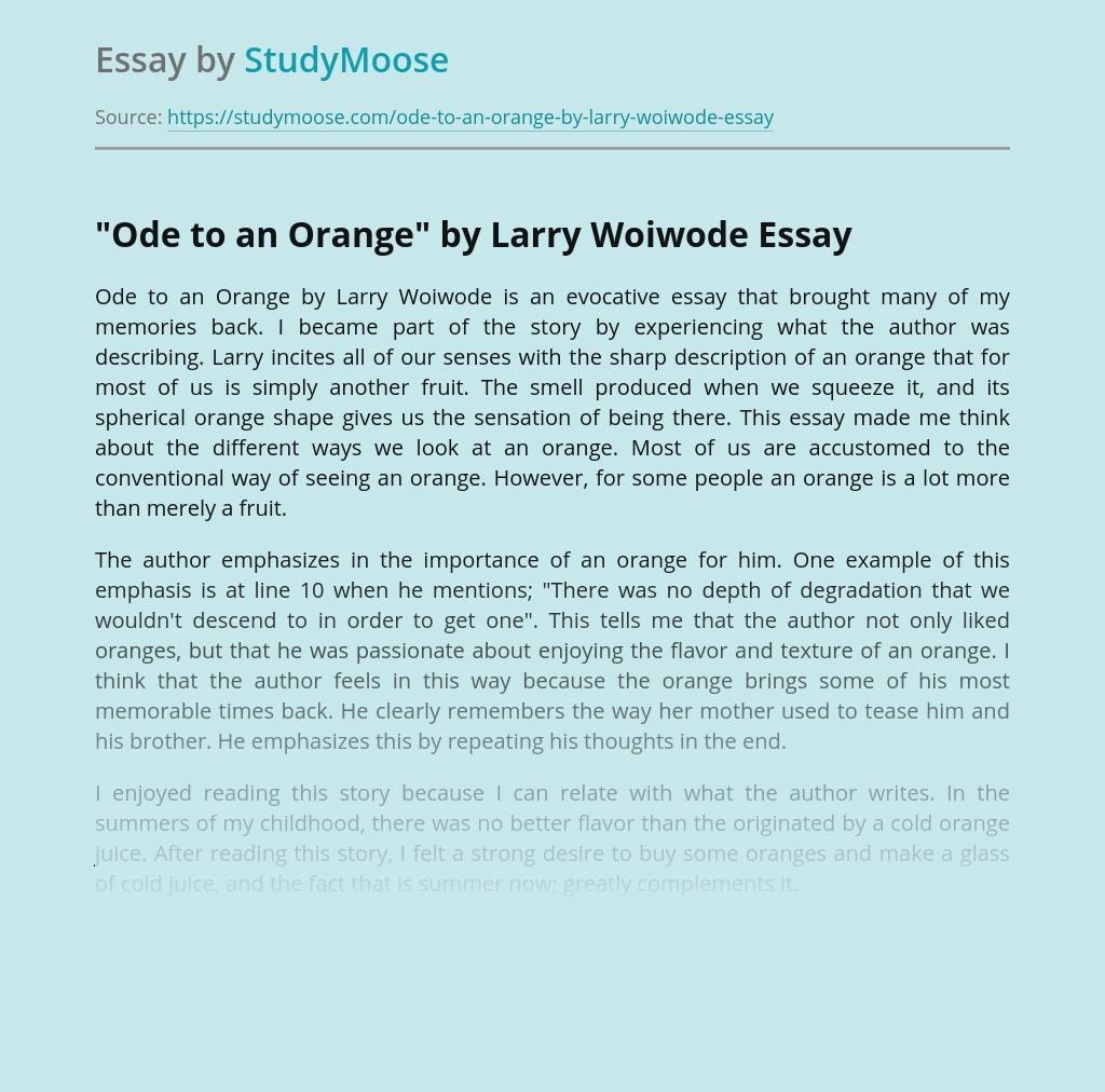 Importance of Memories in Ode to an Orange