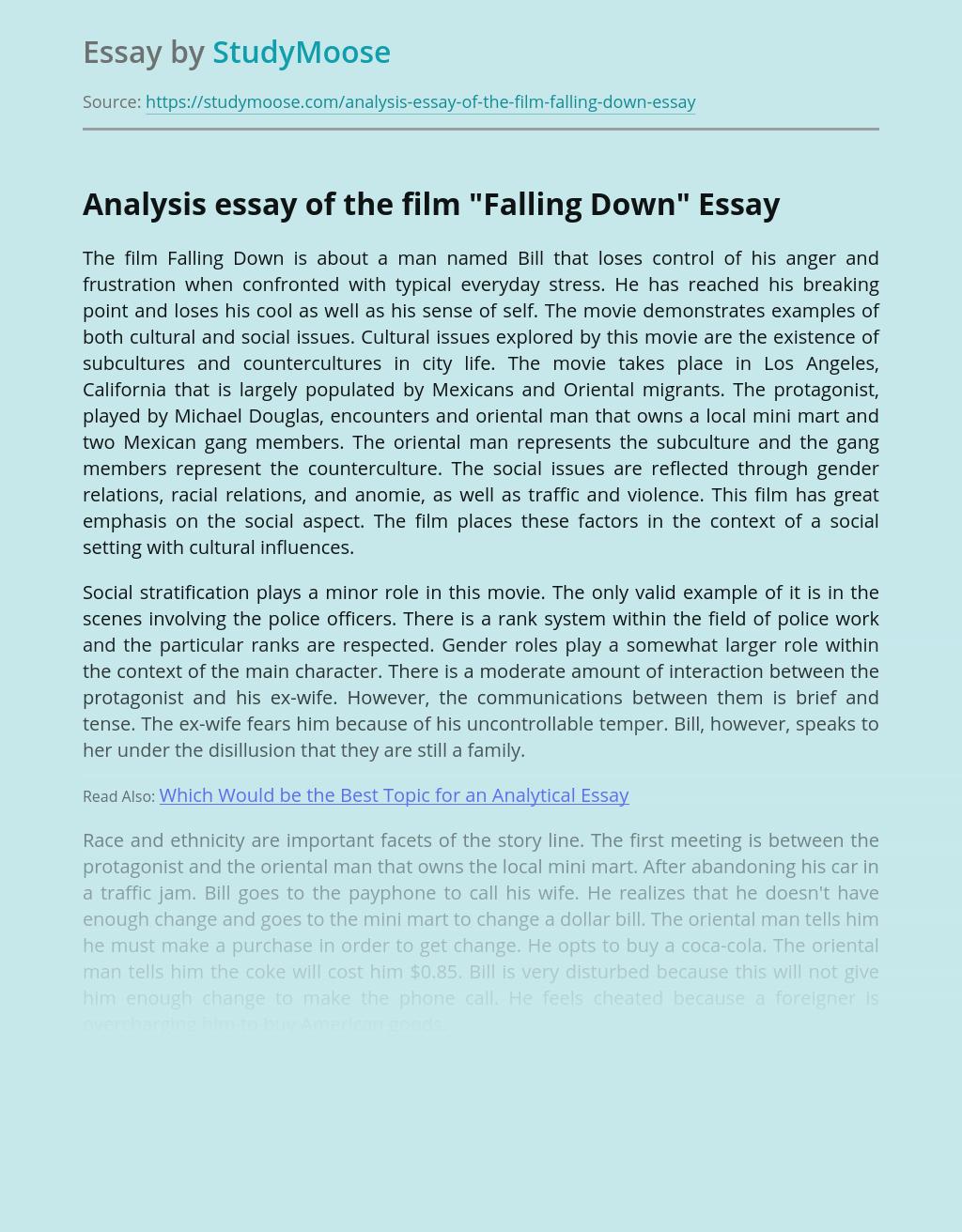Analysis essay of the film