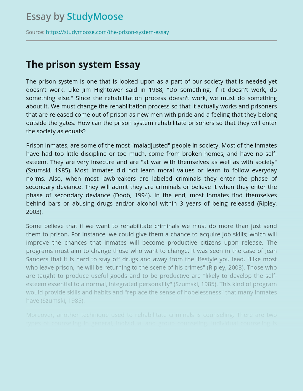 The Prison System in Our Society