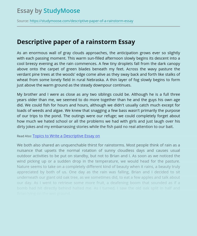 Descriptive paper of a rainstorm