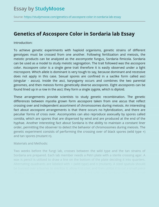 Genetics of Ascospore Color in Sordaria lab