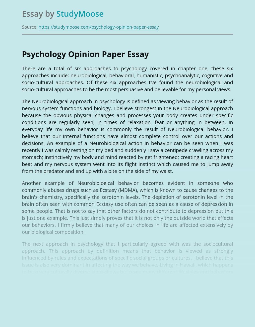 opinionated essay topics